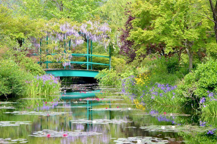 「モネの庭」世界で唯一その名を許された高知の庭園